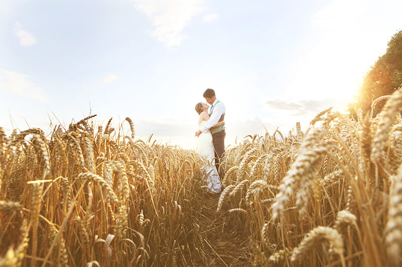 Bride and Groom in Gloucestershire Field